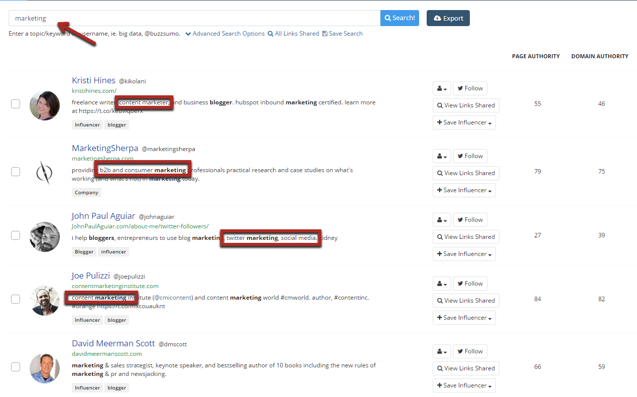 BuzzSumo Influencers